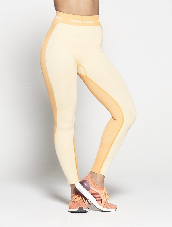 Fitness Legging Dames Oranje Seamless - Pursue Fitness-1