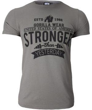 Fitness T-shirt Grijs - Gorilla Wear Hobbs 1