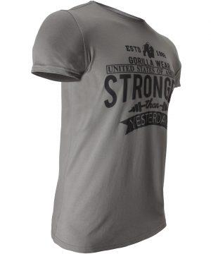Fitness T-shirt Grijs - Gorilla Wear Hobbs 3