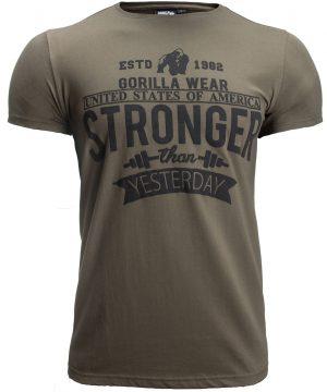 Fitness T-shirt Groen - Gorilla Wear Hobbs 1